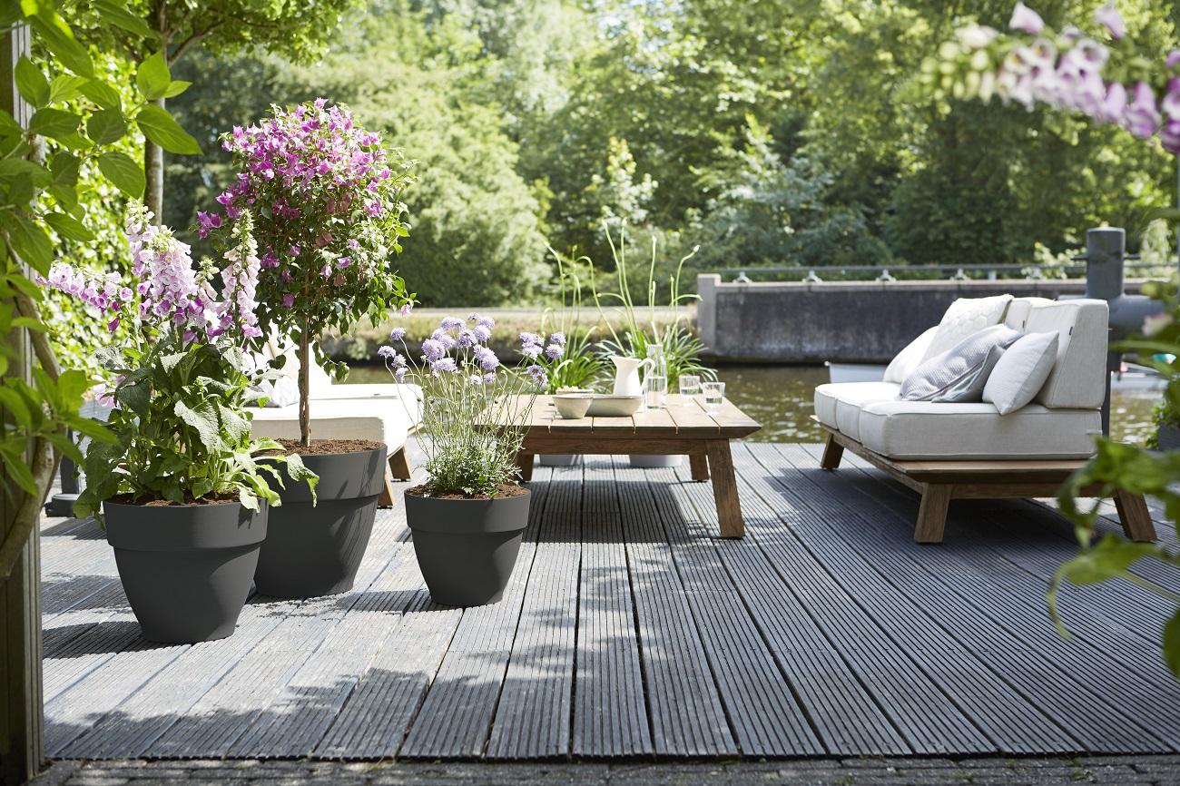 Plantes Pour Jardin Contemporain pour un jardin classique mais contemporain - maison et
