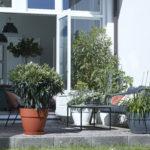 Maison & Jardin magazine pots de fleurs vibia family