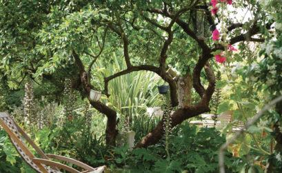 Maison & Jardin magazine en cure bien-être chez Tilleuls et Bambous