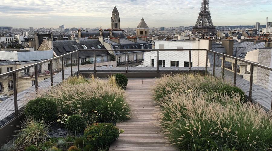 Maison & Jardin magazine rencontre avec Cmonjardinier.com