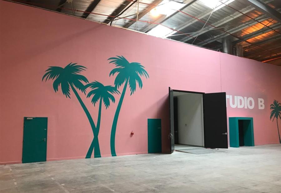 Maison & Jardin magazine les palmiers de Lagarde Peinture & Filles