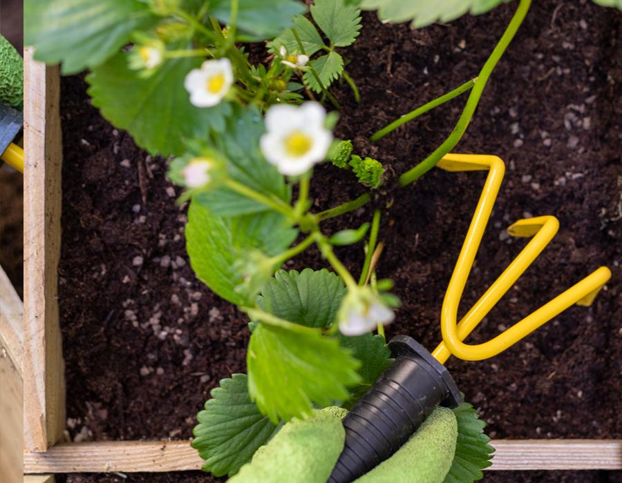 Maison & Jardin magazine aime les engrais écologiques Solabiol
