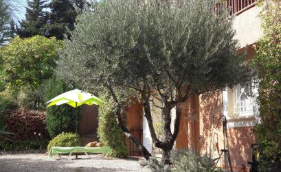 Maison & Jardin magazine présente une demeure de charme en Avignon