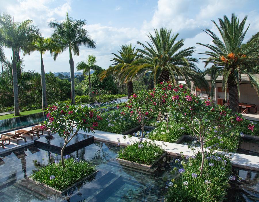 Les bassins et la vue du jardin CGD à Sao Paulo