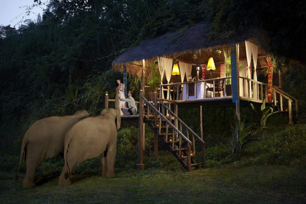 Les élphants rendent visite au résidents de l'hôtel Anantara Golden Triangle Elephant Camp & Resort