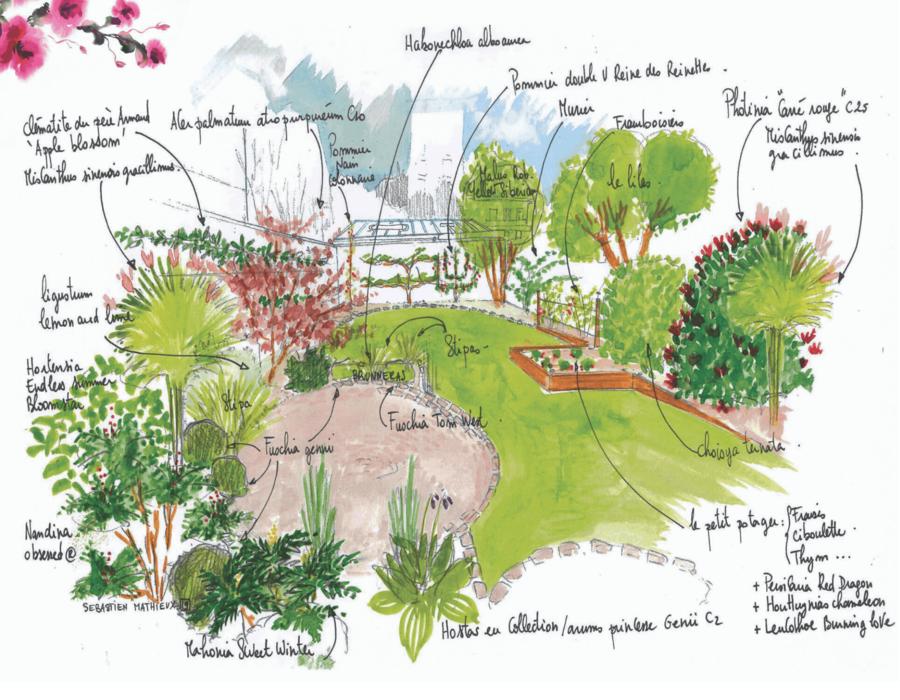 croquis d'une création jardin
