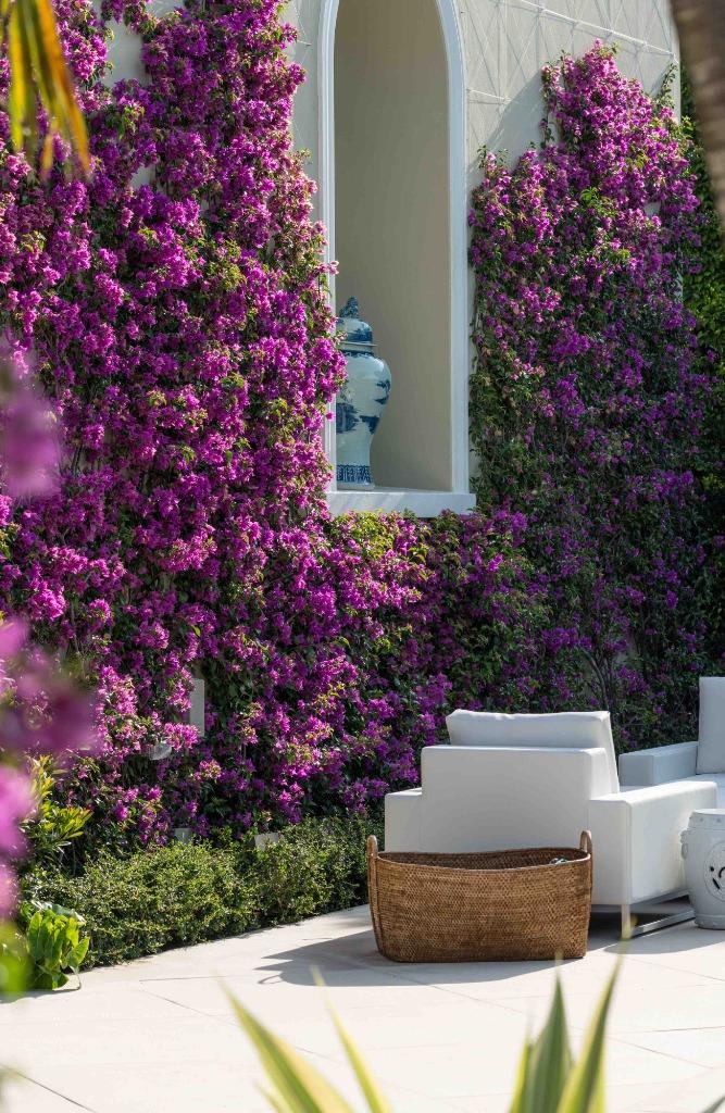 Agence de design, mure de fleurs rose